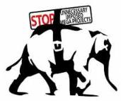 capture-elephant-blanc