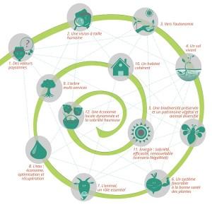 agroecologie-schema1