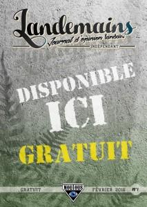 journal LANDEMAAINS 1affiche-L1